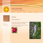 Akademie web