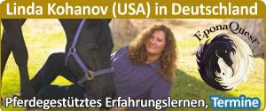 Banner_Linda-Kohanov_Cavallo